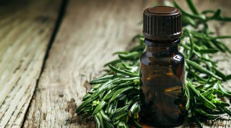 Препоръчват масло от чаено дърво за силен имунитет