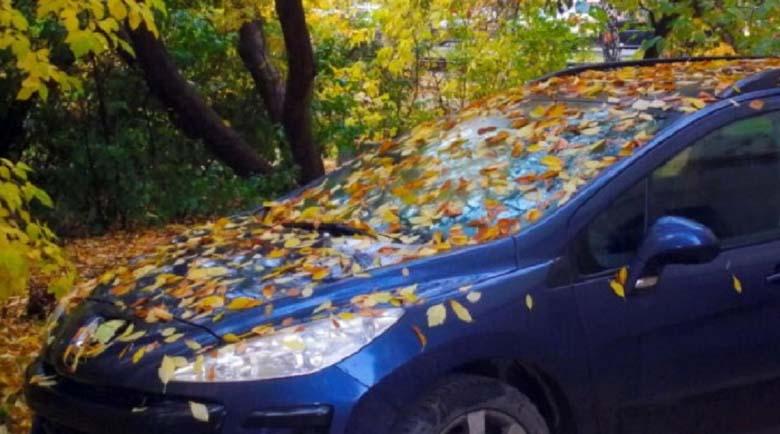 Експерти разкриха най-големите опасности за колата през есента