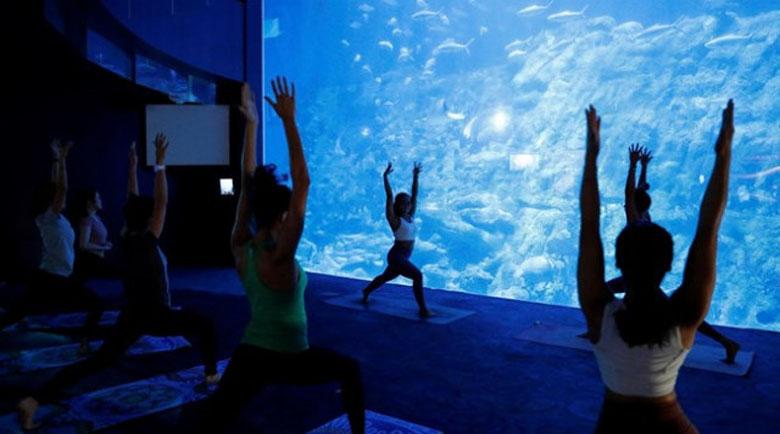 В Хонконг аквариум предлага йога с акули