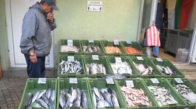 Рибарите в Ахтопол доволни – зареждат с риба цяла България