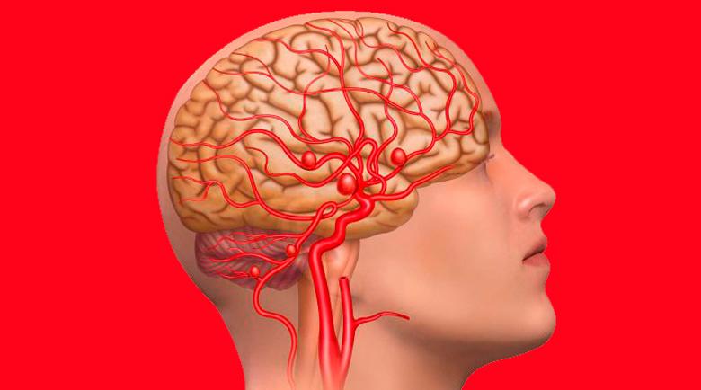 Откриха как коронавирусът атакува мозъка