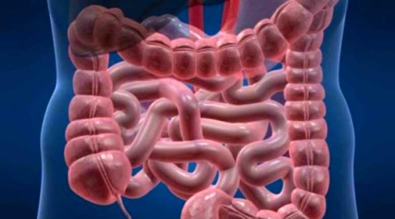 5 знака, че тялото ви е фрашкано с токсини