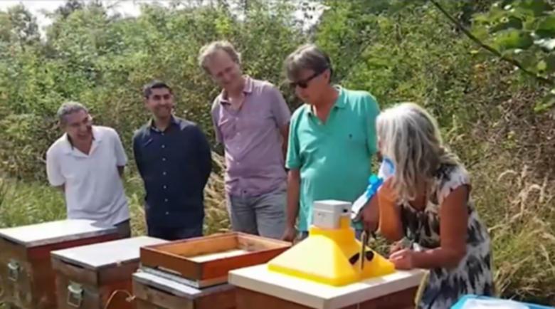 Профилактика срещу COVID-19: Вдишване на мед