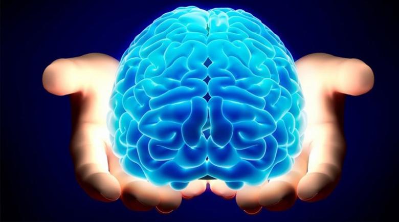 Митове за мозъка, които трябва да бъдат развенчани