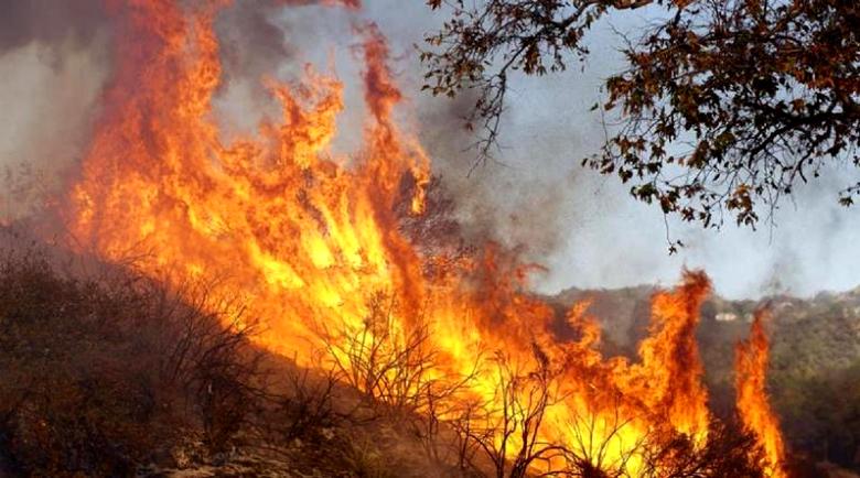 СИРИЗА зад адските пожари през 2018-а със 102 жертви?