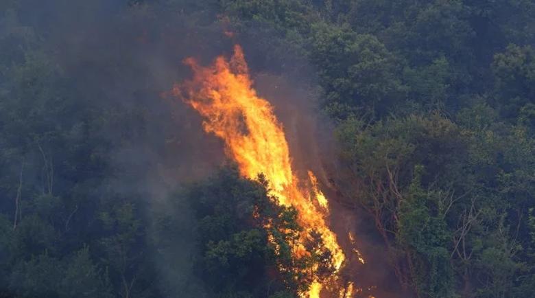 Пожар гори в Рила в труднодостъпна местност